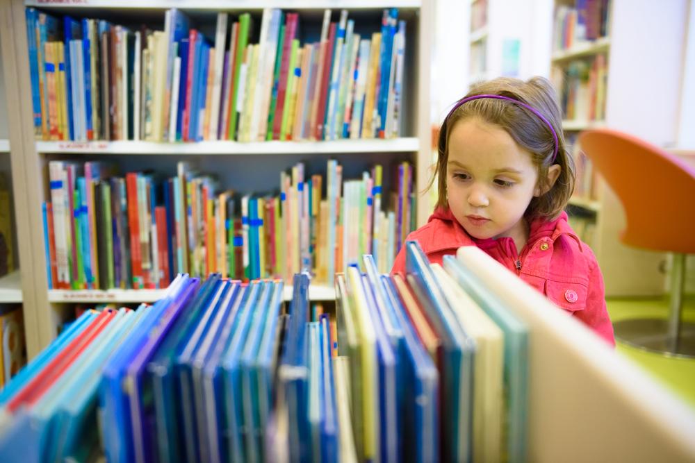curso-para-la-formacion-de-bibliotecarios-escolares