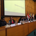 Asistencia técnica reglamentación del tratado de Marrakech