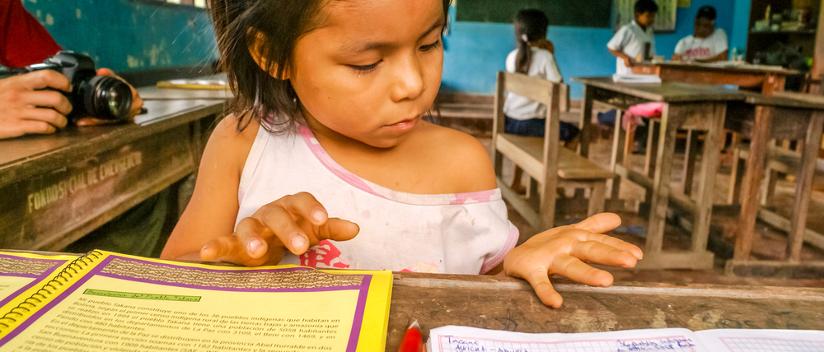 Observatorio Iberoamericano de Cultura y Educación en la Primera Infancia (OPI)