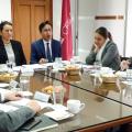 O CERLALC apresentou ao Comitê Executivo os avanços do programa técnico 2018-2019
